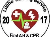 Curso de cpr y first aid