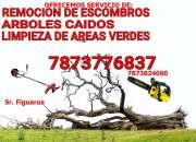 Limpieza de escombros en Ponce y area sur